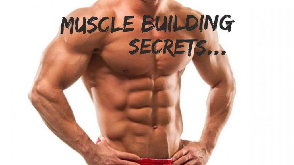 50 Muscle Building Tips