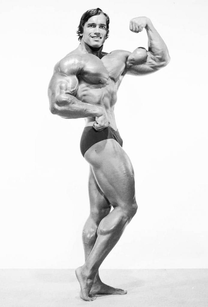 Arnold Schwarzenegger one of the best bodies ever by LEP Fitness
