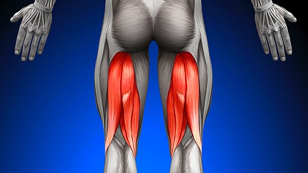 Everything you need to know to get bigger and stronger hamstrings