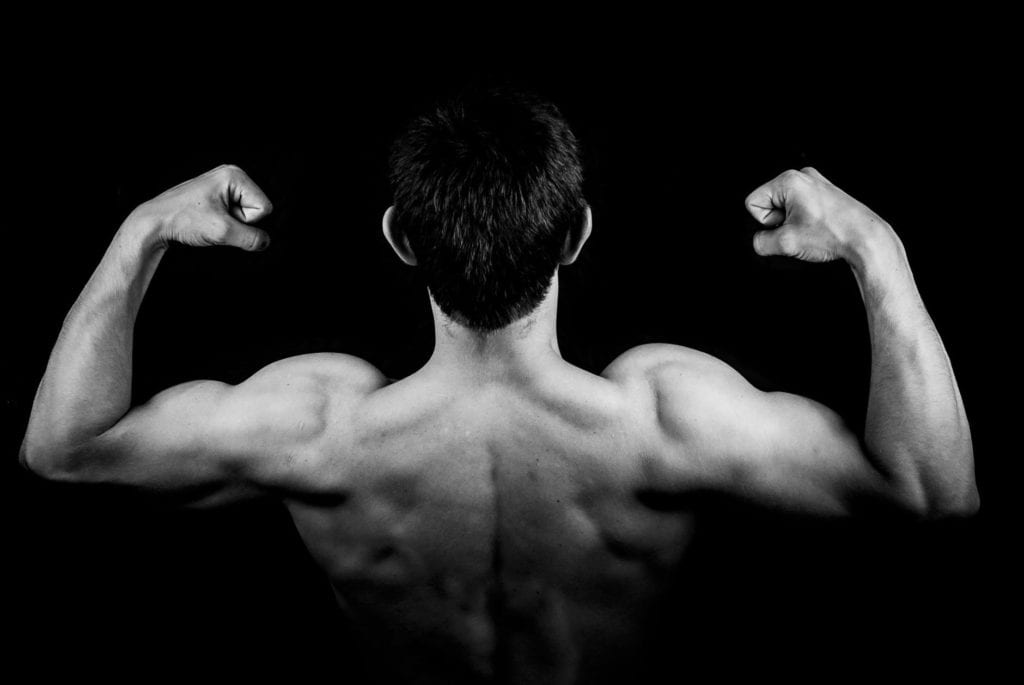 What's the best way to add size to your shoulders | LEP Fitness